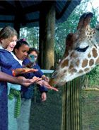 Your New Orleans Power Pass provides free admission to the Audubon Zoo in New Orleans.