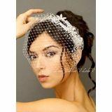 Arabella: Crystal Birdcage Veil and Enchanting Bridal Comb