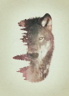 Wolf and habitat double exposure artwork. Wolf and habitat double exposure artwork. Gallery quality print on thick 45cm / 32cm metal plate. Each Displate print verified by the Production Master. Signature and hologram added to the back of each plate for added authenticity & collectors value. Magnetic mounting system included. EUR 39.00 Meer informatie