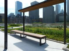 Image result for TORONTO CITY HALL GREEN ROOF