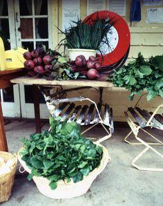organic market, photo:mikkel vang