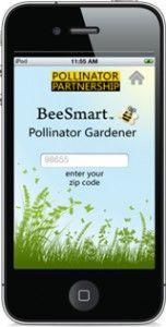 OCBeekeepers – OC Beekeepers Association