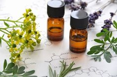 Essential Oils For Seasonal Allergy Relief by @Ashley Turner