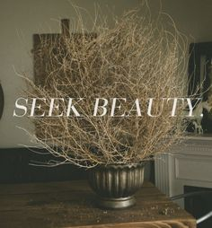 Seek beauty in everything.