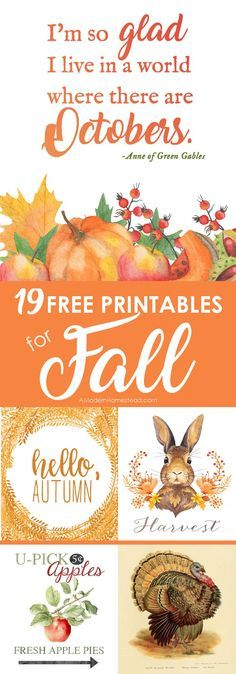 Fall Decor - 22 Printable Fall Art Pieces for FREE! Fall is a time of rich colors, warm drinks, and cool weather. It greets us with a gentle breeze and a promise of calm times to come. Celebrate with these free fall printables for the homestead!
