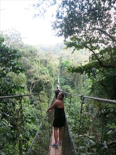 Footbridge at Los Campesinos Reserve, near Quepos, Costa Rica
