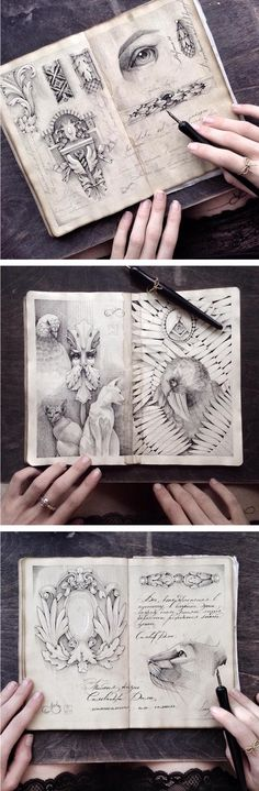 Using dip pens, artist Elena Limkina creates magnificent collections of sketchbook art.