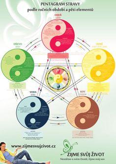 Tarot, Self Treatment, Chinese Medicine, Sacred Geometry, Ayurveda, Feng Shui, Reiki, Cleanse, Zodiac Signs