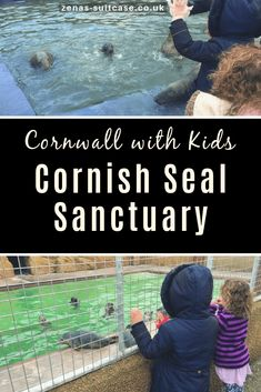 Cornwall with Kids - Read all about our day out at the Cornish Seal Sanctuary in England for your UK vacation inspiration Devon And Cornwall, Cornwall England, Yorkshire England, Yorkshire Dales, Days Out With Kids, Family Days Out, Travel With Kids, Family Travel, Things To Do In Cornwall