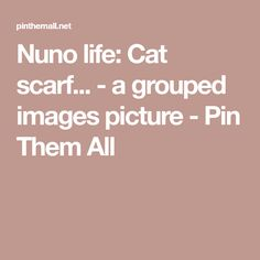Nuno life: Cat scarf... - a grouped images picture - Pin Them All