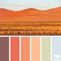 Color View 1.23.18