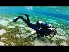 ▶ Diving in Alexander Springs, FL (GoPro) - YouTube