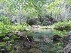 Reserva Forestal Montes de Oca, La Guajira,  Colombia