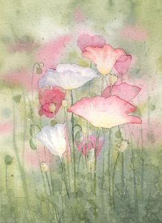 Poppies, watercolor, painter unknown ✿⊱╮