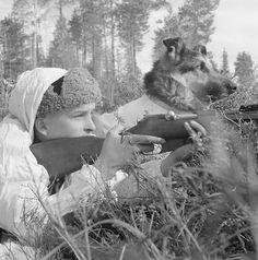 Finnish soldier and dog in position near Kiestinki, 25 April, 1942. Photographer: Erkki Viitasalo