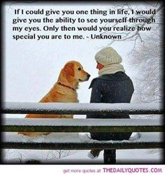 This is why I will never understand how anyone could harm a dog. Or any animal that loves you just because your there.