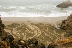 'Kelp' Andres Amador's Earthscape art