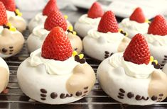 brown/white cat donuts with strawberry hats