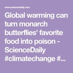Global warming can turn monarch butterflies' favorite food into poison - ScienceDaily #climatechange #pollinators