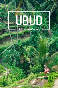 A first timer's guide to Ubud. Everything you need to know about the heart of Bali. 10  attractions