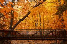bridge in Holland, Michigan