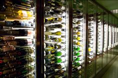 Vyne Wine Bar - wine fridge wall