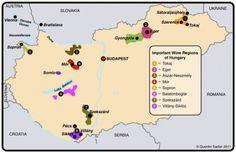 Wine Regions of Hungary Wine Advertising, Wine Facts, Wine Education, Wine Guide, Wine Deals, Grape Juice, Wine Drinks, Wine Country, Wine Lover