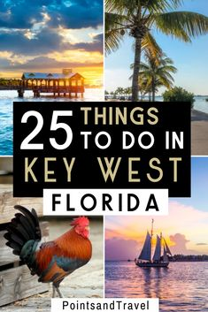 Planning a trip to the Florida Keys and looking for the best things to do in Key West? This Key West travel guide will show you the 25 best things to do in Key West Florida, tips on where to stay, where to eat in Key West and more! Maui Vacation, Florida Travel, Vacation Places, Vacation Ideas, Key West Beaches, Key West Vacations, Usa Travel Guide, Travel Usa, Canada Travel