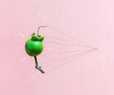 Plant Geometry - Karina Sharpe Portfolio - The Loop