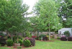 Beautiful country garden!