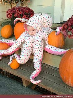 Baby Octopus