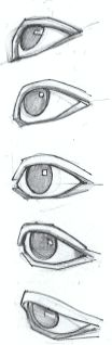Eye reference drawing