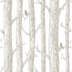 """Found it at AllModern - 18' x 20.5"""" the Forest Peel and Stick Wallpaper"""