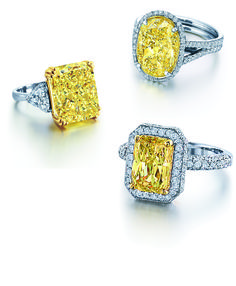 Fancy Intense Yellow Diamond Rings in oval, emerald, princess and asscher cut shapes - Available at Govberg Jewelers