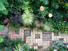 Paved garden with grass, fern and flower plants.