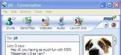 Recupera MSN con Messenger Reviver