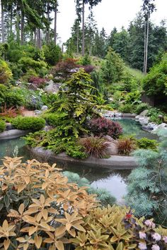 Beautiful, healthy blue water can be achieved with Organic Pond products!  www.organicpond.com