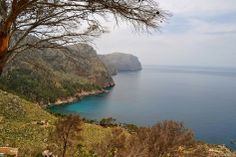 Excursión a Sa Torre Nova ( Andratx) | Una Arjonera en Mallorca