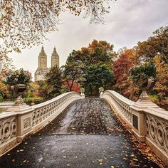 Bow Bridge, Central Park by godsavethegold #nyc