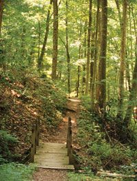 Brown County State Park, Indiana, USA
