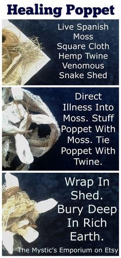 Healing Poppet with live Spanish moss and venomous snake shed - Pinned by The Mystic's Emporium on Etsy