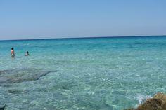 Punta suina, Gallipoli