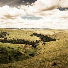 Oregon - 050 by The Paul Miller, via Flickr