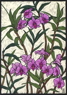 COOKTOWN ORCHID 47.5 X 33.5 CM EDITION OF 50 HAND COLOURED LINOCUT ON HANDMADE JAPANESE PAPER $850
