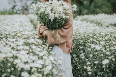 flowers and everything floral Love Flowers, Wild Flowers, Beautiful Flowers, Beautiful Pictures, Flower Aesthetic, Aesthetic Photo, Aesthetic Pictures, Cute Wallpapers, Aesthetic Wallpapers