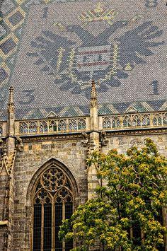 Esto es lo que veía desde la terraza de mi casa, en GreBen Strasse!  St. Stephen's Cathedral, Vienna, Austria