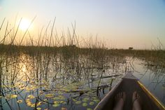Front-row sunset view on a mokoro. Okavango Delta, Botswana. #Africa #Travel #sunset #experience