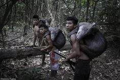 Hunters: Photographer Domenico Pugliese is one of those lucky enough to spend time with this tribe, for which family is all important European People, Amazon Tribe, Amazon Rainforest, Closer To Nature, Mundo Animal, Close Up Photos, Documentary Photography, Manga, Squirrel