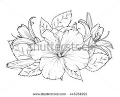 Hibiscus and lily flowers bouquet. Detailed vector drawing. Spring summer event design element. Black on white background. - stock vector