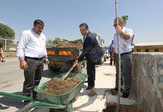 Buca'da hedef, üç yılda 20 bin ağaç - Çınar Haber Ajansı
